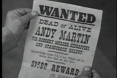 wanted dead or alive.jpg